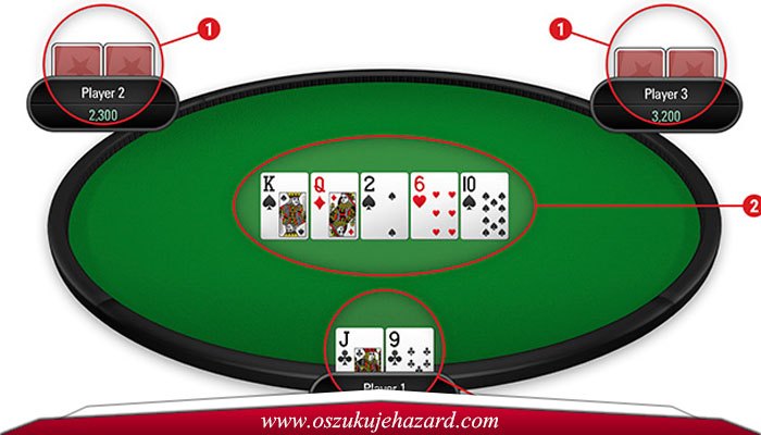 Bot Player Dalam Poker Online